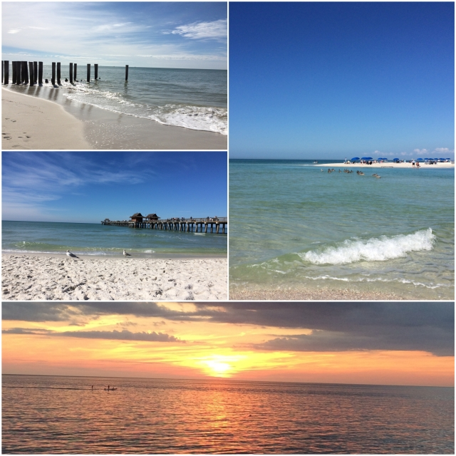 This is Naples, Florida. I realize some of you are from places like this, but in general, for me, January is like this: https://flic.kr/p/j3YYB3