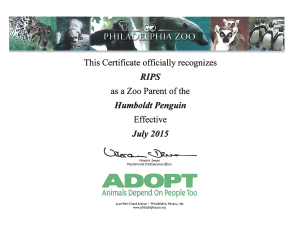 RIPS Penguin Adoption Certificate 2015