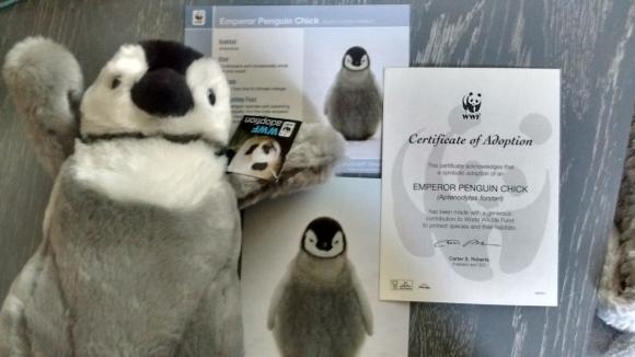 penguingroupshot1.jpg