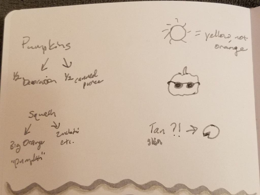 Half a page of words and images about pumpkins with connecting arrows, a sun icon, a pie icon, and a small pumpkin wearing sunglasses, all drawn in gray ink on white paper.